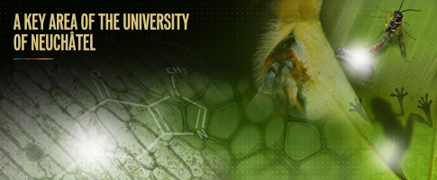 Chemical Ecology Competence Centre